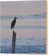 Night Heron Dawn Post Wood Print