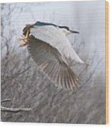 Night Heron In Flight Wood Print
