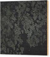 Night Leaves II Wood Print