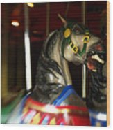 Night Mares At The Central Park Carousel 3 Wood Print