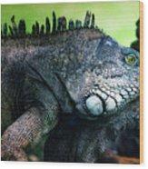 Night Of The Iguana Wood Print