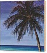 Night On The Beach Wood Print