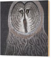 Night Owl Wood Print