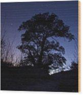night sky and trees in Molino Canyon Mount Lemmon AZ Wood Print