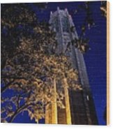 Night Tower Wood Print