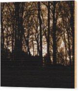 Night Trees Wood Print