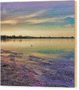 Nightfall On The Bay Wood Print