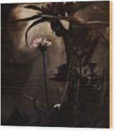 Nightflower Wood Print
