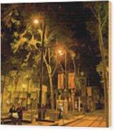 Nights San Jose Downtown  Wood Print