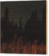 Nighttime Meadow  Wood Print
