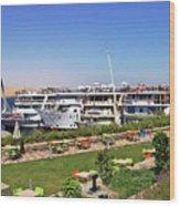 Nile Cruise Ships Aswan Wood Print