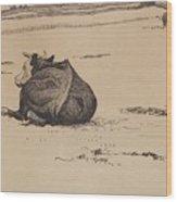 Nils Kreuger, 1858-1930, Resting Cow Wood Print