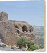 Nimrod Fortress National Park  Wood Print