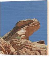 Nine Mile Canyon Utah  Wood Print