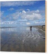 Ninety Mile Beach New Zealand Wood Print