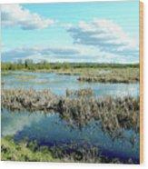 Nisqually Marsh Wood Print