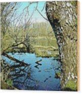 Nisqually Pond Wood Print