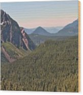Nisqually Valley In Color Wood Print