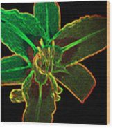 Nite Glow Flower Wood Print