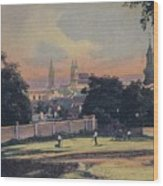 Nitra - Nyitra Slovakia, Cca 1900 Wood Print