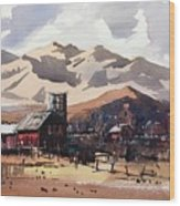 Niwot Colorado Wood Print