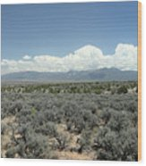 New Mexico Landscape 3 Wood Print