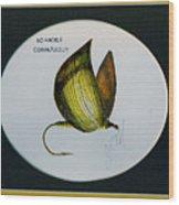 No Hackel Comparadum Wood Print