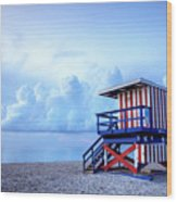 No Lifeguard On Duty Wood Print