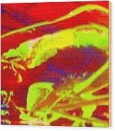 No One Kisses A Sleeping Frog Wood Print