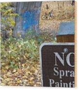 No Spray Painting Wood Print