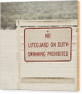 No Swimming Wood Print by Lisa Russo
