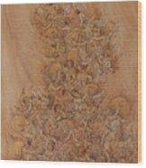 No Title Wood Print