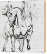 Noble Stallion Wood Print