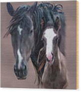 Nokota Mare And Foal Wood Print