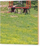 None Of Your Red Wagon Wood Print