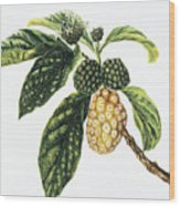Noni Fruit Wood Print