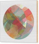 Noon Moon No.10 Wood Print