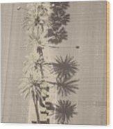 Noon Palms Wood Print