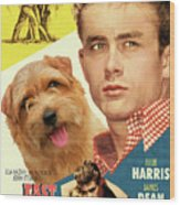Norfolk Terrier Art Canvas Print - East Of Eden Movie Poster Wood Print