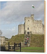 Norman Keep At Cardiff Castle Wood Print