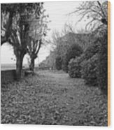 Normandy Black And White Wood Print