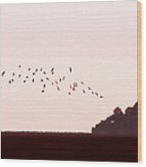 Normandy Dusk Wood Print