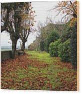 Normandy Wood Print