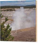 Norris Geyser Basin One Wood Print