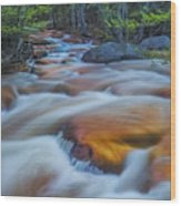North Branch Rapid In Spring  Wood Print