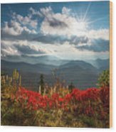North Carolina Blue Ridge Parkway Scenic Landscape In Autumn Wood Print