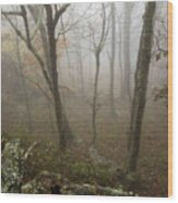 North Carolina Foggy Mountain  Wood Print