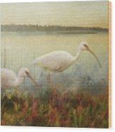 North Carolina Ibis Wood Print