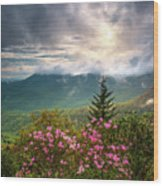 North Carolina Spring Flowers Blue Ridge Parkway Scenic Landscape Asheville Nc Wood Print