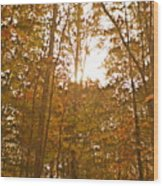 North Carolina Woods Wood Print